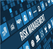 financial risk management program