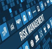 financial risk management program