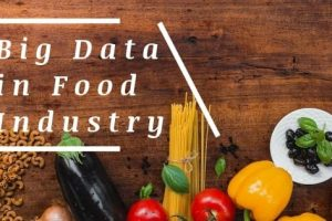 Big Data to Run a Successful Food Franchise